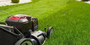 Grounds services